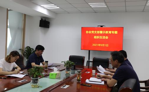 协会党支部召开警示教育专题组织生活会